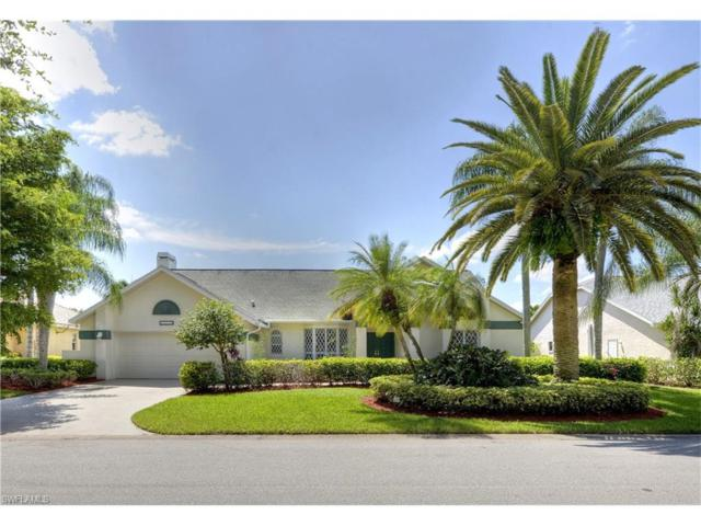 15278 Briarcrest Cir, Fort Myers, FL 33912 (MLS #217053304) :: The New Home Spot, Inc.