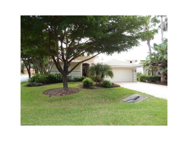 7976 Glenfinnan Cir, Fort Myers, FL 33912 (MLS #217053924) :: Florida Homestar Team