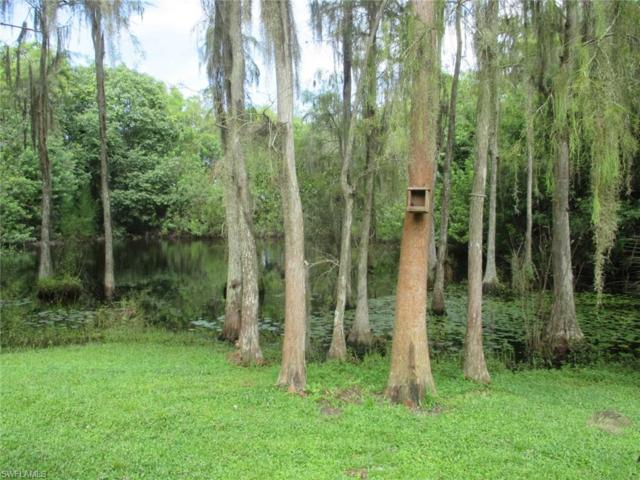 11081 Trinity Pl, Naples, FL 34114 (MLS #217055520) :: The New Home Spot, Inc.