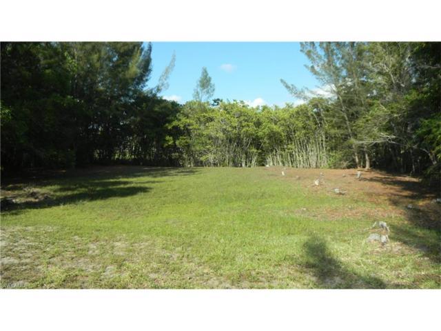 14202 Pacosin Ct, Bokeelia, FL 33922 (MLS #217056286) :: The New Home Spot, Inc.