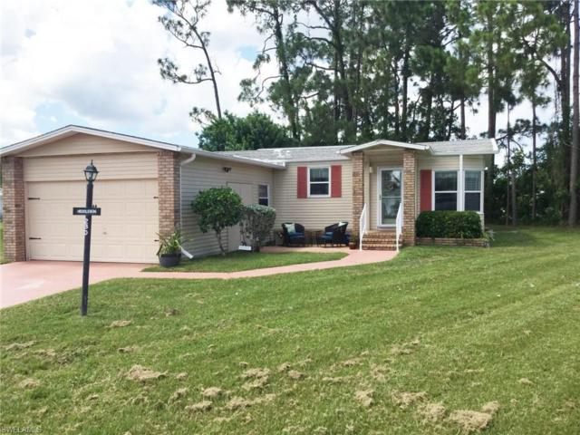 19631 Eagle Trace Ct, North Fort Myers, FL 33903 (MLS #217056738) :: The New Home Spot, Inc.