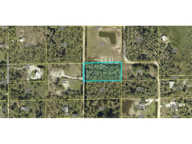 8720 Evergreen Ln, St. James City, FL 33956 (MLS #217056744) :: The New Home Spot, Inc.
