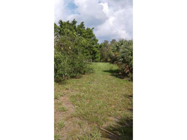 291 4th Ave, Labelle, FL 33935 (MLS #217058711) :: The New Home Spot, Inc.