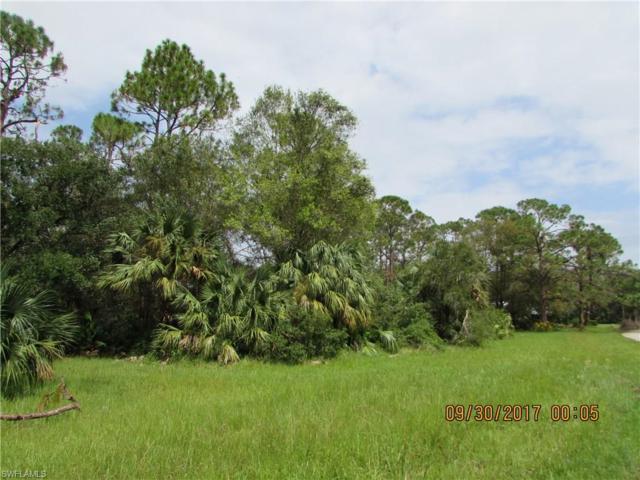 18601 Telegraph Creek Ln, Alva, FL 33920 (MLS #217059556) :: The New Home Spot, Inc.