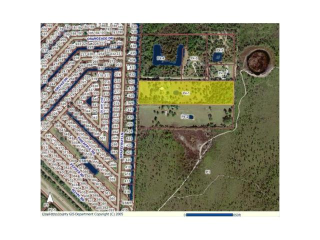 11370 Grapefruit Ln, Punta Gorda, FL 33955 (MLS #217059601) :: The New Home Spot, Inc.