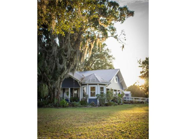 3059 NE Crystal St, Arcadia, FL 34266 (MLS #217059819) :: The New Home Spot, Inc.