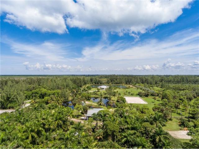 14600 Tamarac Dr, Bokeelia, FL 33922 (MLS #217060439) :: The New Home Spot, Inc.