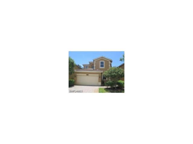 10249 Southgolden Elm Dr, Estero, FL 33928 (MLS #217060510) :: The New Home Spot, Inc.