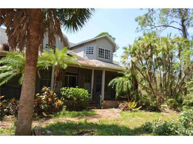 25526 Luci Dr, Bonita Springs, FL 34135 (MLS #217060772) :: The New Home Spot, Inc.