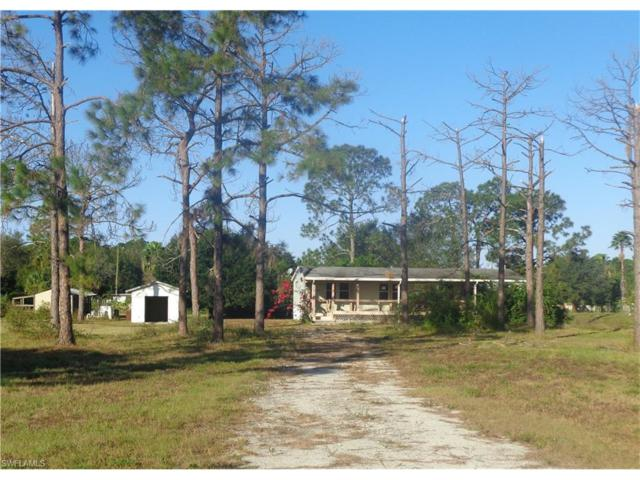 4550 Pioneer 16th St, Clewiston, FL 33440 (MLS #217062025) :: The New Home Spot, Inc.
