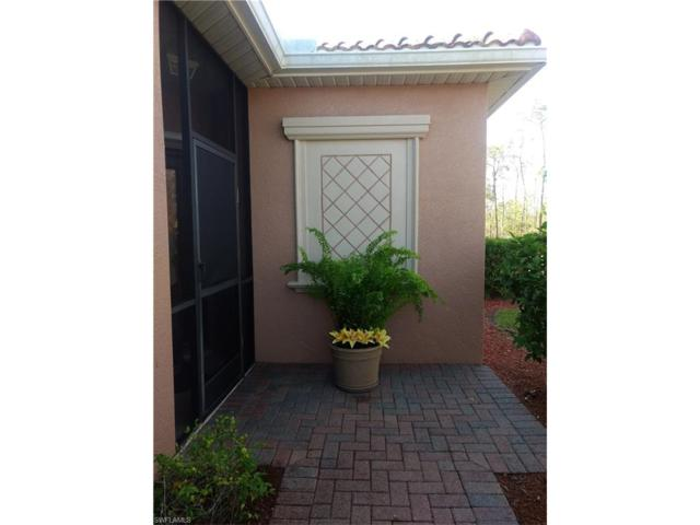 21350 Bella Terra Blvd, Estero, FL 33928 (MLS #217062285) :: The New Home Spot, Inc.