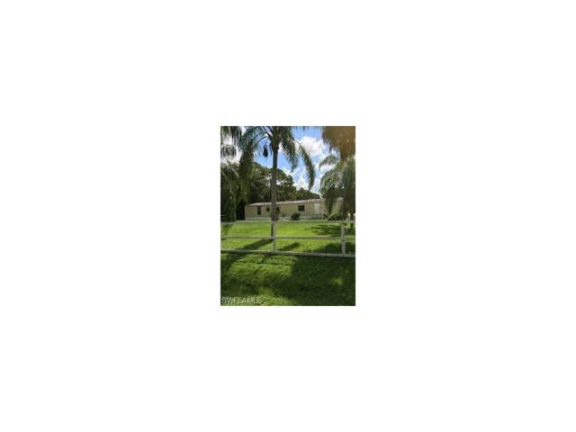 8209 Nault Rd S, North Fort Myers, FL 33917 (MLS #217062416) :: The New Home Spot, Inc.