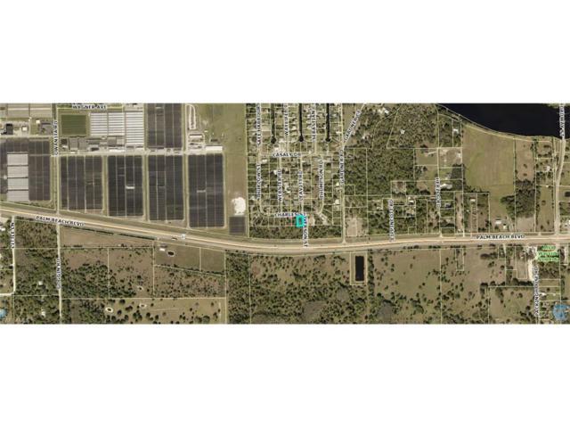 20620 Charles St, Alva, FL 33920 (MLS #217062487) :: The New Home Spot, Inc.