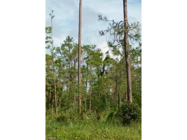 5857 Shady Oaks Ln, Naples, FL 34119 (MLS #217063637) :: The New Home Spot, Inc.