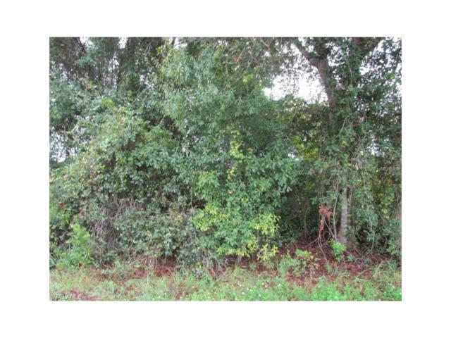 27049 Paratins Dr, Punta Gorda, FL 33983 (MLS #217063871) :: The New Home Spot, Inc.