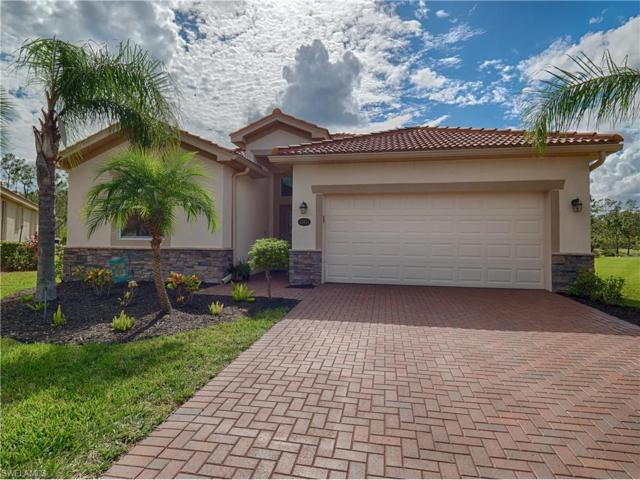13074 Cardeto Ct, Estero, FL 33928 (MLS #217064412) :: The New Home Spot, Inc.