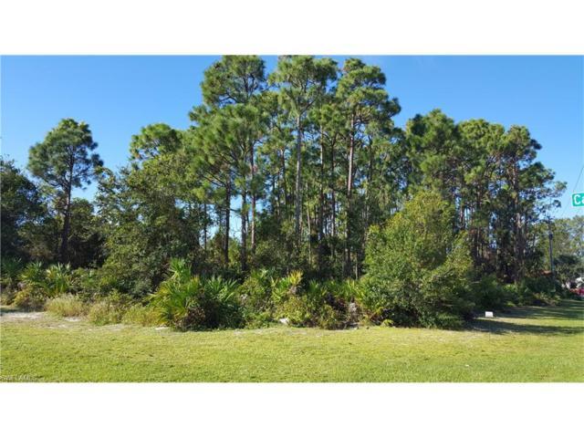 24267 Sassaman Ct, Punta Gorda, FL 33955 (MLS #217065356) :: The New Home Spot, Inc.