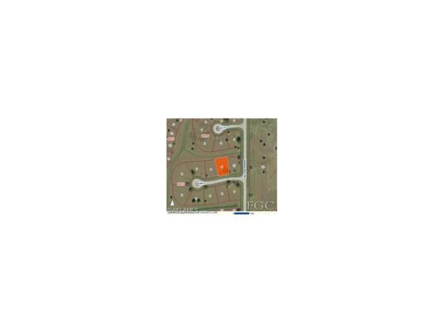 24482 Julian Ct, Punta Gorda, FL 33955 (MLS #217065933) :: The New Home Spot, Inc.