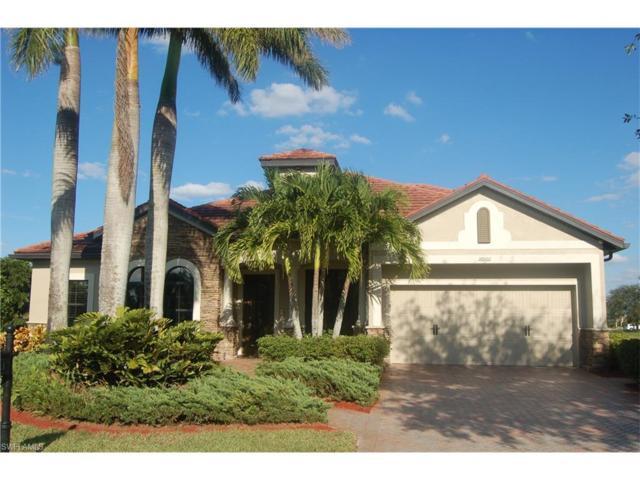 16001 Herons View Dr, Alva, FL 33920 (MLS #217066875) :: The New Home Spot, Inc.