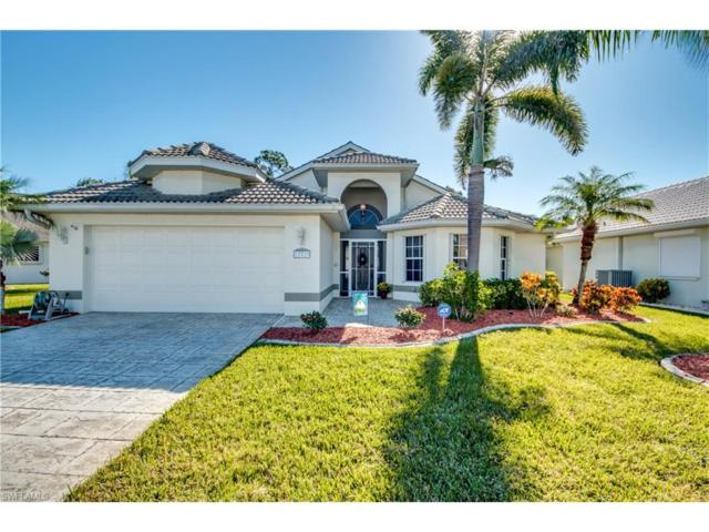 17720 Pineapple Palm Ct, North Fort Myers, FL 33917 (MLS #217067625) :: The New Home Spot, Inc.