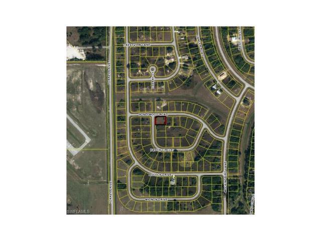 3128 Kapok Cir, Labelle, FL 33935 (MLS #217068504) :: The New Home Spot, Inc.
