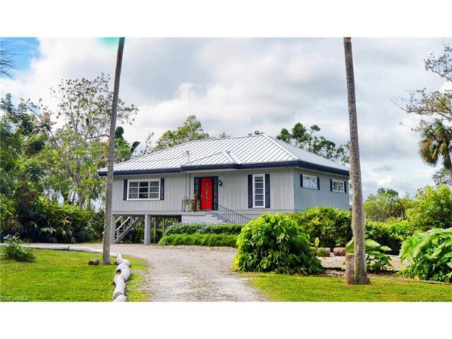 390 Caloosa Dr, Labelle, FL 33935 (MLS #217069718) :: The New Home Spot, Inc.