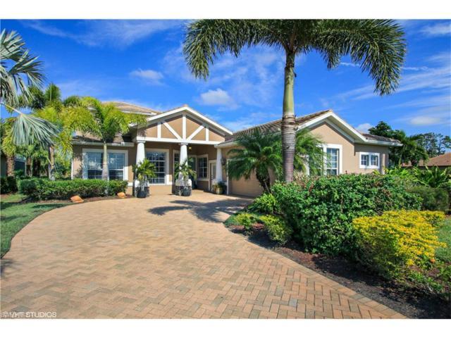 17255 Walnut Run Dr, Alva, FL 33920 (MLS #217070249) :: The New Home Spot, Inc.