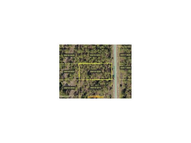 919 Wells Ave, Lehigh Acres, FL 33972 (MLS #217071405) :: RE/MAX DREAM