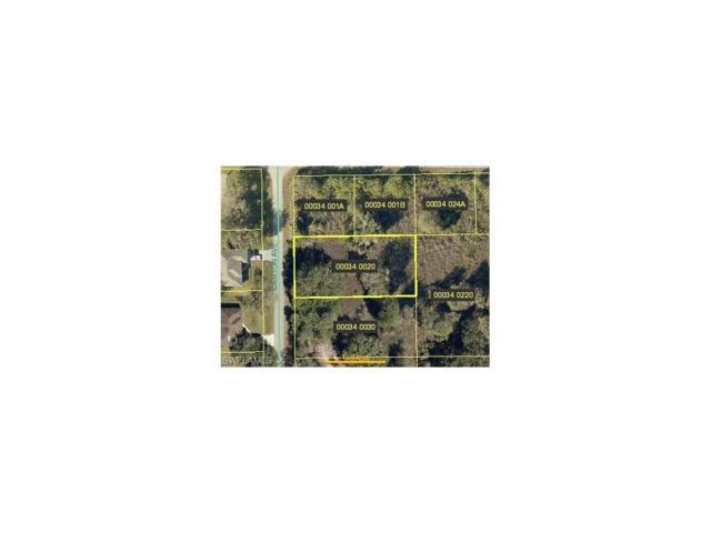 1820 Canton Ave, Lehigh Acres, FL 33972 (MLS #217071412) :: RE/MAX DREAM