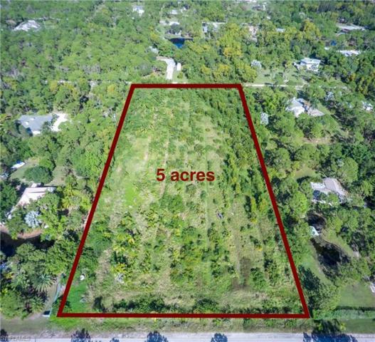 4220 Sunshine Blvd, St. James City, FL 33956 (MLS #217074479) :: RE/MAX DREAM