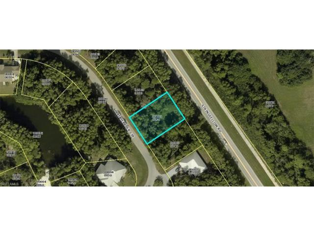 4432 Lake Heather Cir, St. James City, FL 33956 (MLS #217076129) :: The New Home Spot, Inc.
