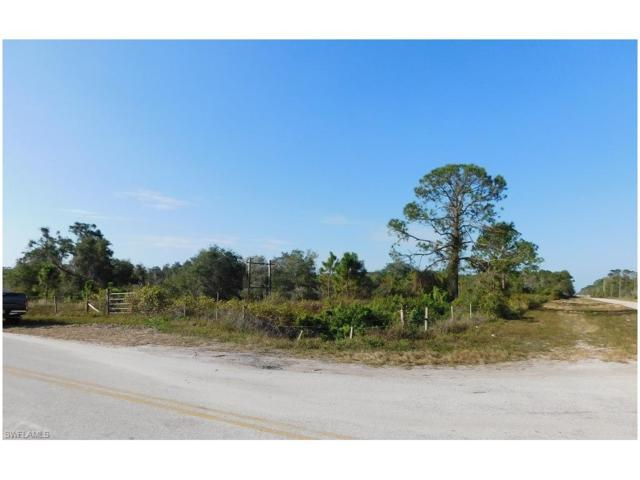 Loblolly Bay Rd, Labelle, FL 33935 (MLS #217079178) :: RE/MAX Realty Group