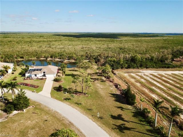4981 Island Acres Ct, St. James City, FL 33956 (MLS #217079620) :: Clausen Properties, Inc.