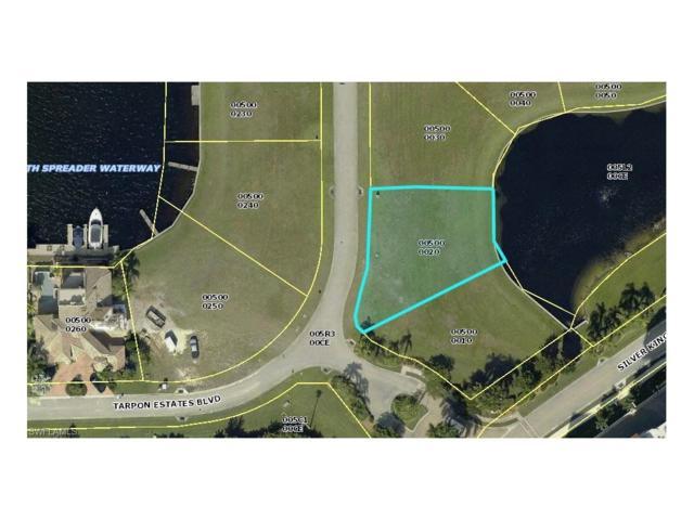6047 Tarpon Estates Blvd, Cape Coral, FL 33914 (MLS #218000607) :: The New Home Spot, Inc.