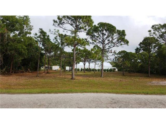 4802 Gulf Shore Rd, St. James City, FL 33956 (MLS #218003451) :: The New Home Spot, Inc.