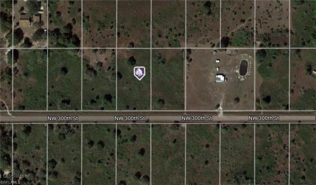 14975 NW 306th St, Okeechobee, FL 34972 (MLS #218008757) :: The New Home Spot, Inc.