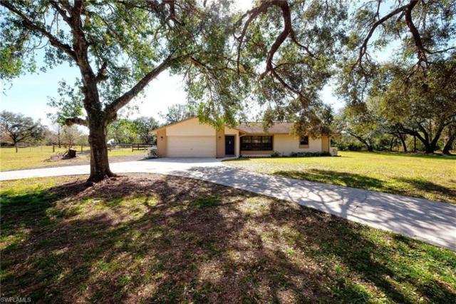 18620 Telegraph Creek Ln, Alva, FL 33920 (MLS #218009865) :: The New Home Spot, Inc.