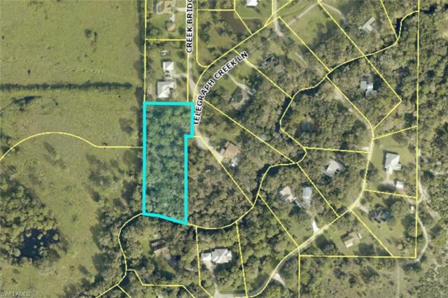 18751 Telegraph Creek Ln, Alva, FL 33920 (MLS #218014284) :: RE/MAX Realty Team