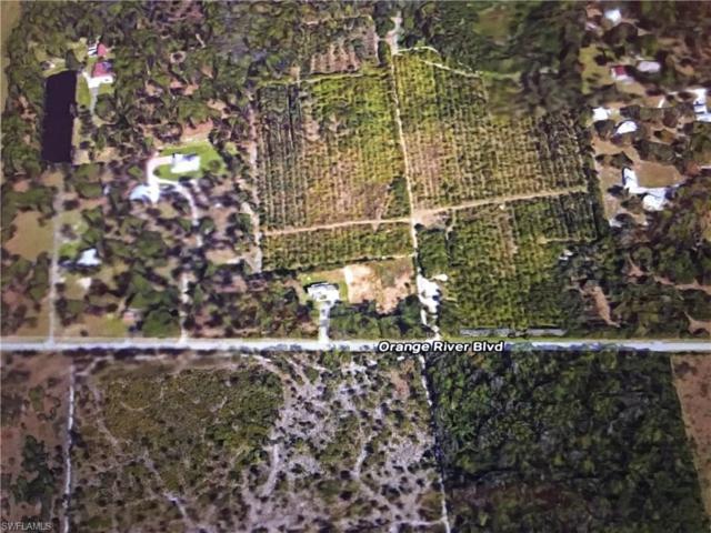 11861 Orange River Blvd, Fort Myers, FL 33905 (MLS #218014537) :: RE/MAX Realty Group