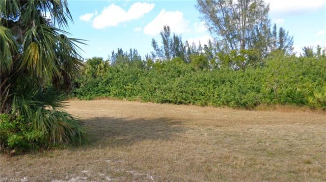 24228 Jean La Fitte, Punta Gorda, FL 33955 (MLS #218015802) :: RE/MAX Realty Group