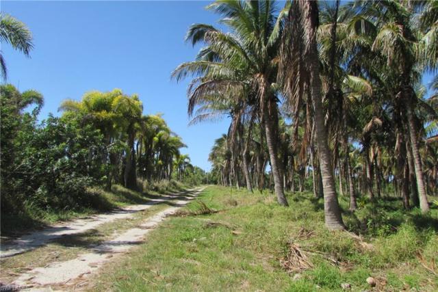 13120 Samadani Ln, Bokeelia, FL 33922 (MLS #218015838) :: Clausen Properties, Inc.