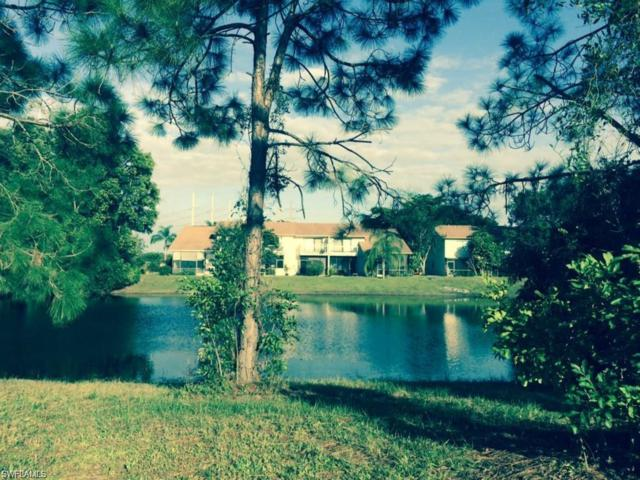 26571 Robin Way, Bonita Springs, FL 34135 (#218015931) :: The Dellatorè Real Estate Group