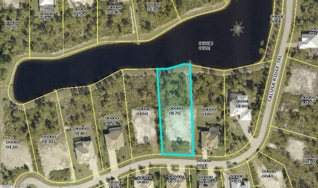 6117 Calusa Ridge Trl, Bokeelia, FL 33922 (MLS #218019780) :: Clausen Properties, Inc.