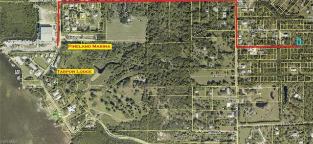 Guava Ave, Bokeelia, FL 33922 (MLS #218020669) :: RE/MAX DREAM