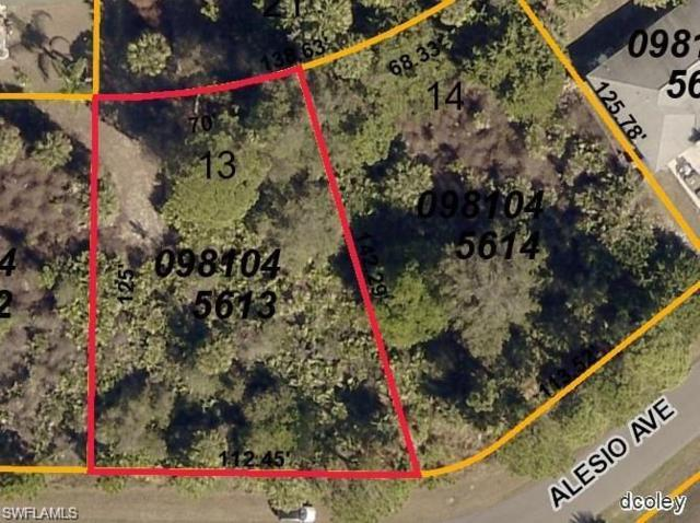 Alesio Ave, North Port, FL 34286 (MLS #218022719) :: RE/MAX Realty Group
