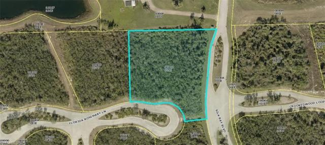 22951 Florida Rosemary Ln, Alva, FL 33920 (MLS #218023356) :: RE/MAX Realty Group