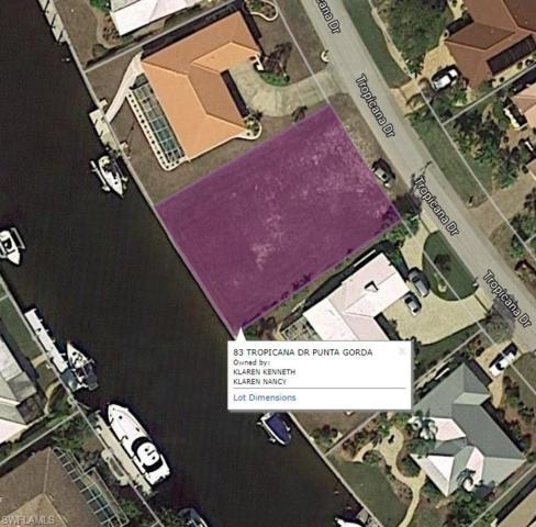 83 Tropicana Dr, Punta Gorda, FL 33950 (MLS #218024909) :: RE/MAX Realty Group