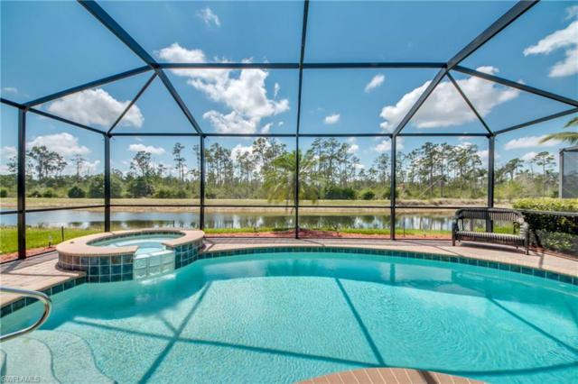 9232 River Otter Dr, Fort Myers, FL 33912 (MLS #218027215) :: RE/MAX DREAM