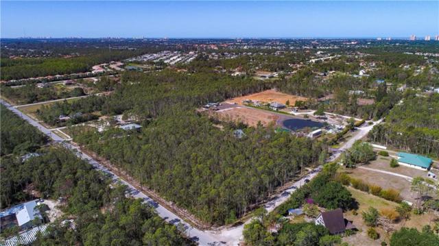 25656 Tropic Acres Dr, Bonita Springs, FL 34135 (MLS #218028401) :: RE/MAX Realty Team