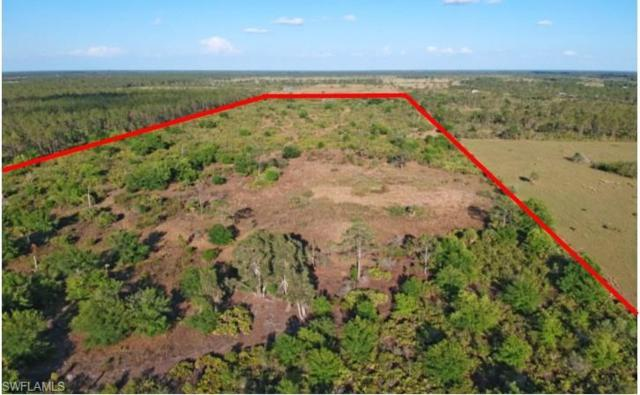 1311 Krisdale Ave, Labelle, FL 33935 (MLS #218028657) :: RE/MAX Realty Group